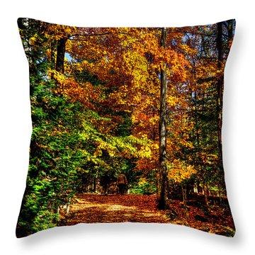 Autumn Walk Throw Pillow by David Patterson