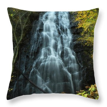 Throw Pillow featuring the photograph Autumn Waterfall by Deborah Smith
