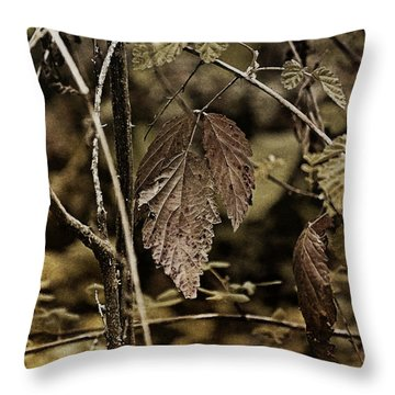 Autumn Whispers Throw Pillow by Bonnie Bruno