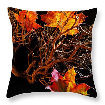 Throw Pillow featuring the photograph Autumnal Feelings by Beverly Cash