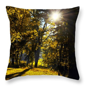 Autumnal Morning Throw Pillow by Bill Cannon