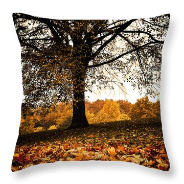 Autumnal Park Throw Pillow