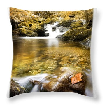 Autumnal Stream Throw Pillow by Mal Bray