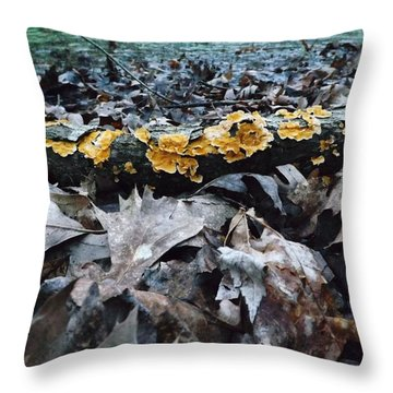 Throw Pillow featuring the photograph Autumns Art 3 by Gerald Strine