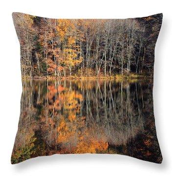 Autumns Art Throw Pillow by Karol Livote