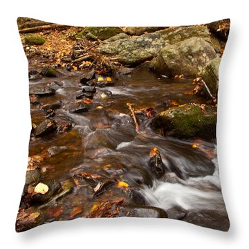 Autumns Creek Throw Pillow by Karol Livote