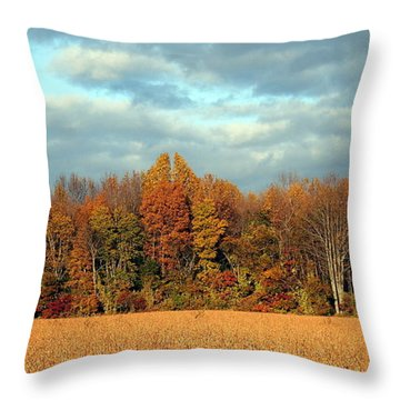 Autumn's Majesty Throw Pillow