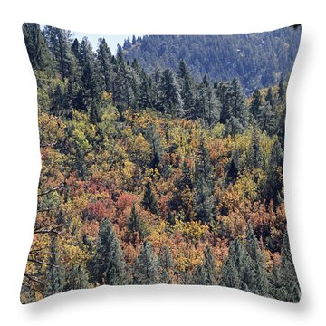 Autumns Palette Throw Pillow