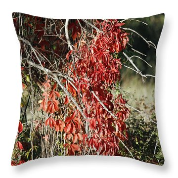 Autumns Red Vines Throw Pillow