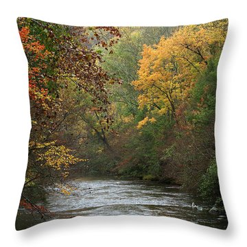 Autumn's Splendor Throw Pillow by TnBackroadsPhotos