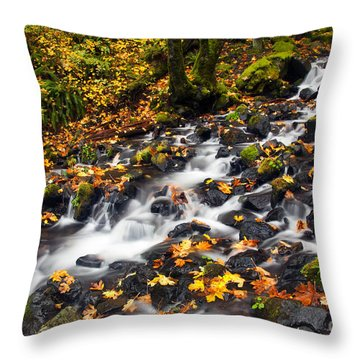 Autumn's Staircase Throw Pillow by Mike  Dawson