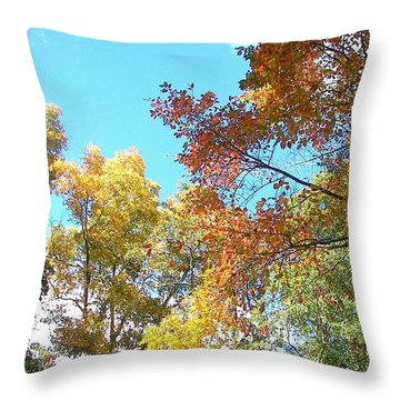 Throw Pillow featuring the photograph Autumn's Vibrant Image by Pamela Hyde Wilson