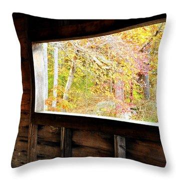 Autumn's Window Throw Pillow