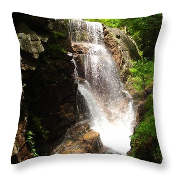 Avalanche Falls Throw Pillow