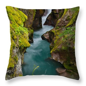 Avalanche Gorge Throw Pillow by Greg Nyquist