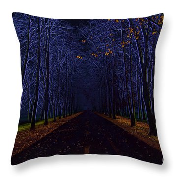 Avenue Of Trees Throw Pillow by Michal Boubin