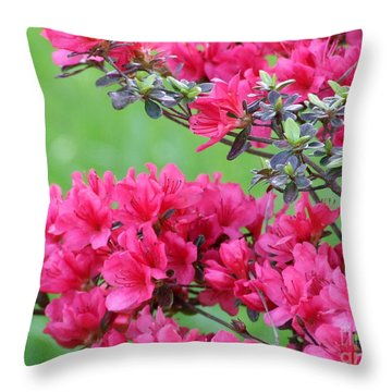 Throw Pillow featuring the photograph Azalea by Andrea Anderegg