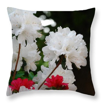 Azaleas Throw Pillow by Linda Mesibov