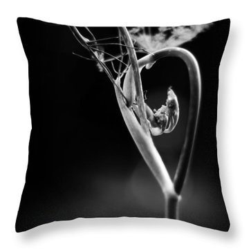 B Is For Bronze Fennel Throw Pillow