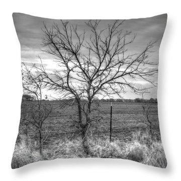 B/w Tree In The Country Throw Pillow