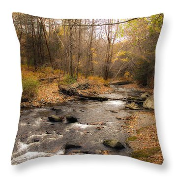 Babbling Brook In Autumn Throw Pillow