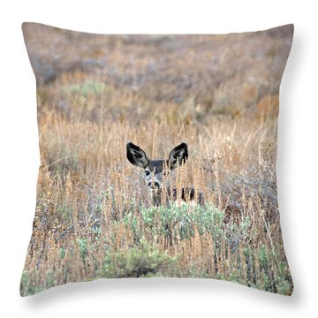 Throw Pillow featuring the photograph Babe In Hiding by Lynn Bauer