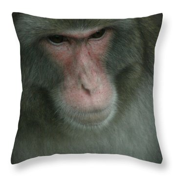 Baboon Throw Pillow