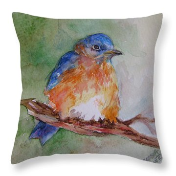 Baby Blue Bird Throw Pillow