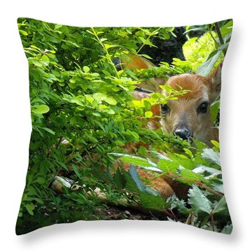 Baby Lin  Throw Pillow