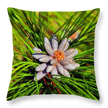 Baby Pine Cones Throw Pillow by David Lee Thompson