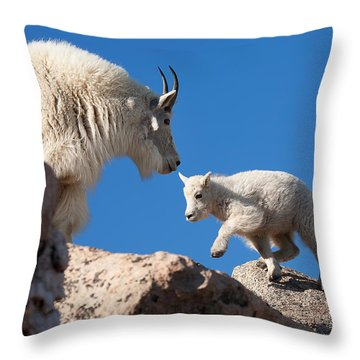 Throw Pillow featuring the photograph Baby Steps by Jim Garrison