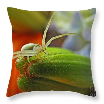 Throw Pillow featuring the photograph Back Off by Debbie Portwood