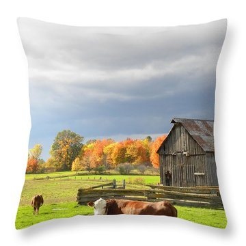 Back Road Beauty Throw Pillow