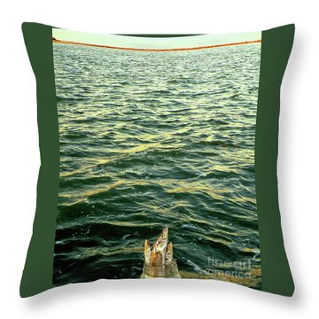 Back To The Sea Throw Pillow by Joe Jake Pratt