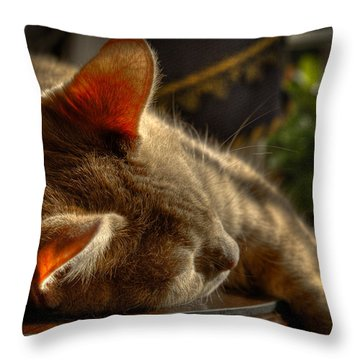 Backlit Ears Throw Pillow by David Patterson