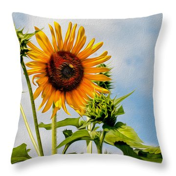 Backyard Guest Throw Pillow