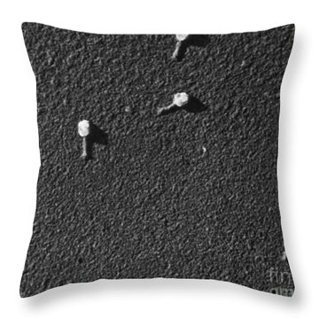 Bacteriophage T2 Throw Pillow