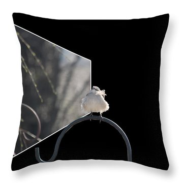 Bad Feather Day Throw Pillow by EricaMaxine  Price