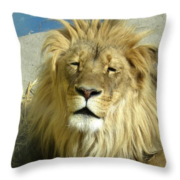 Bad Hair Day Throw Pillow by George Jones