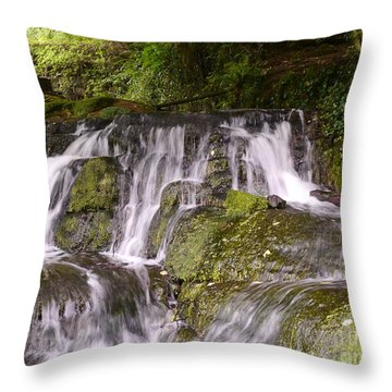 Badger Dingle Throw Pillow by John Chatterley