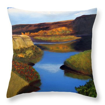 Badlands River Throw Pillow