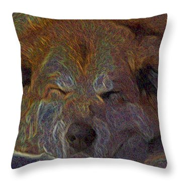 Baily May Throw Pillow by One Rude Dawg Orcutt