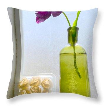 Balance Throw Pillow by Diane montana Jansson