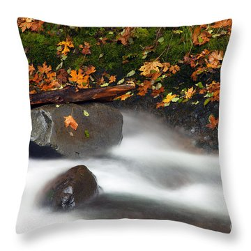 Balance Of The Seasons Throw Pillow by Mike  Dawson