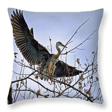 Balance Throw Pillow by Sue Stefanowicz