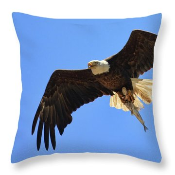 Bald Eagle Catch Throw Pillow