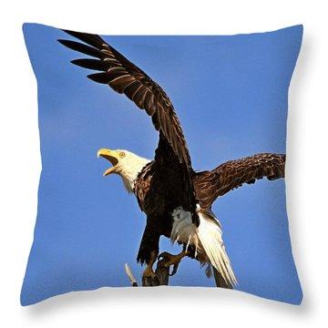 Bald Eagle Screaming Throw Pillow