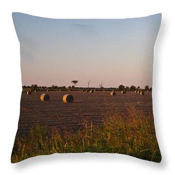 Bales In Peanut Field 10 Throw Pillow by Douglas Barnett