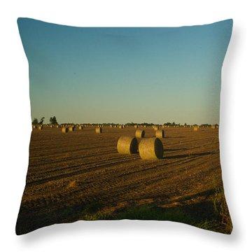 Bales In Peanut Field 13 Throw Pillow by Douglas Barnett