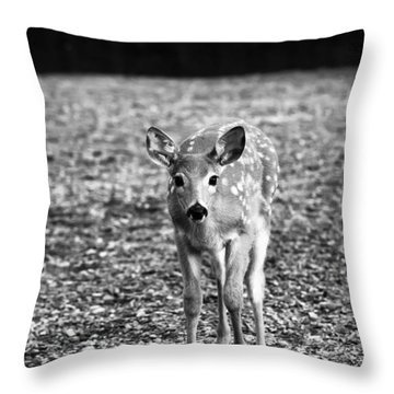 Bambi In Black And White Throw Pillow by Sebastian Musial